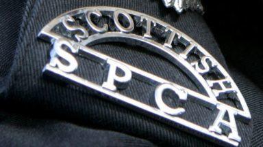 Scottish SPCA.