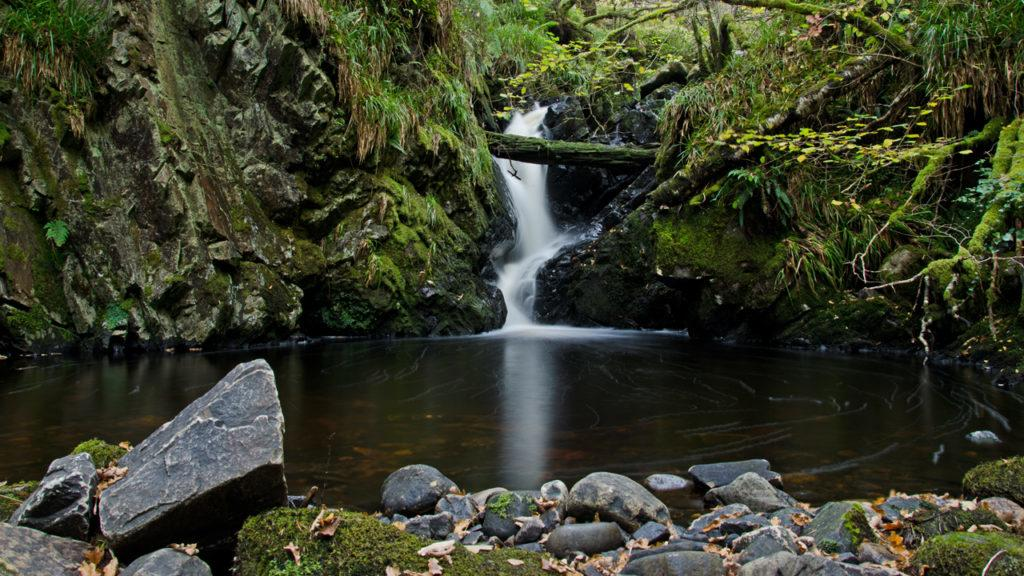 Fairy Glen: The picnic spot was favoured by Andrew Carnegie and his family.