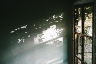 Sunshine door.