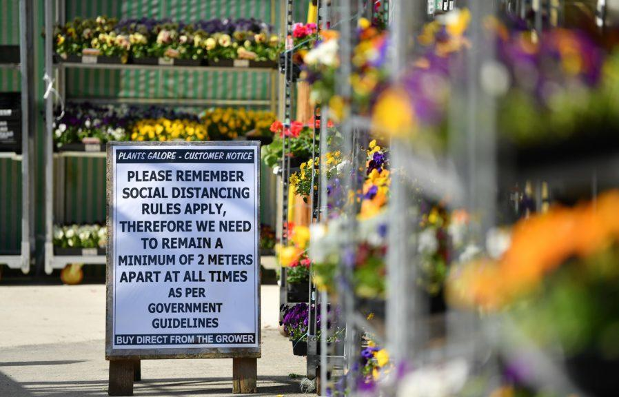 Garden centres are among the businesses being allowed to reopen next week.