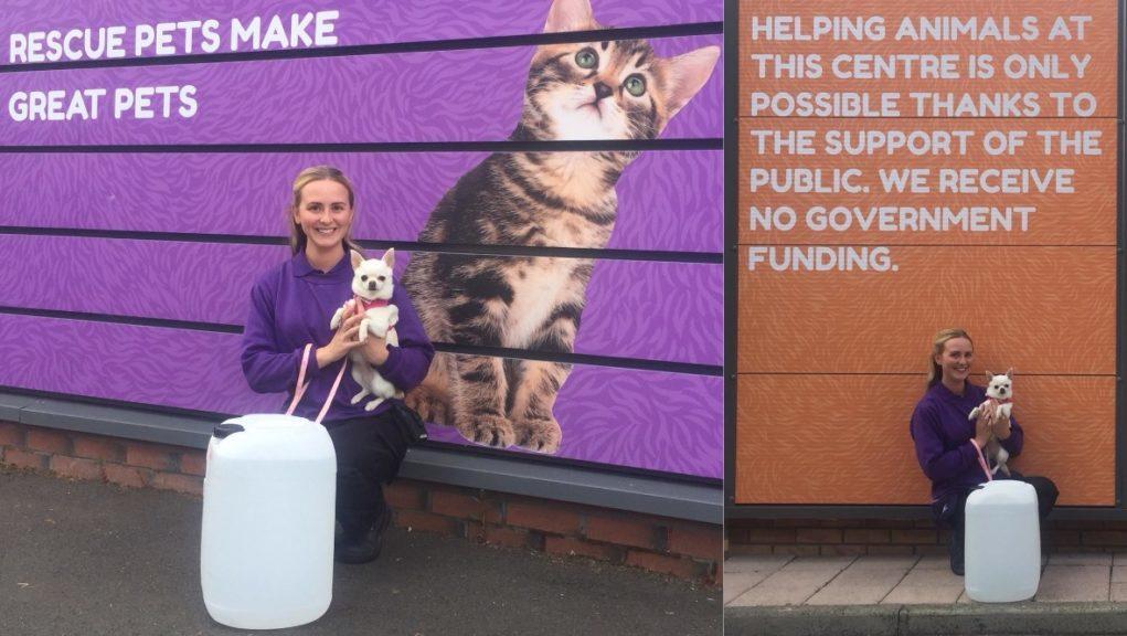 Raise a glass: Bacardi has donated hand sanitiser to the Scottish SPCA.