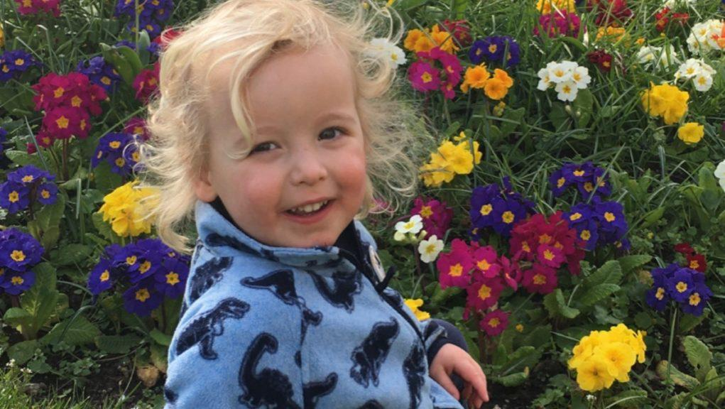Tribute: Xander Irvine loved books and Lego.