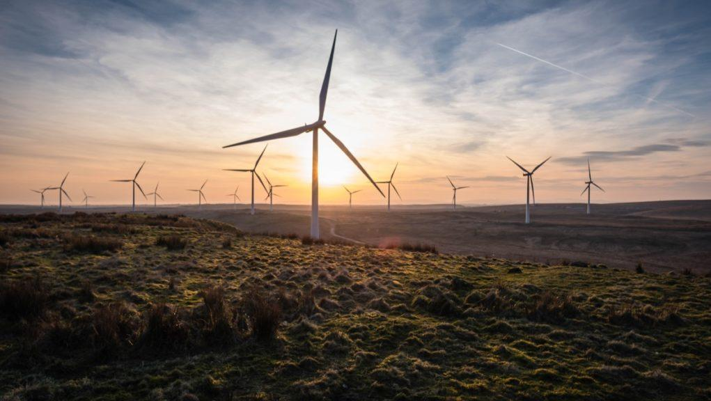 Whitelee Wind Farm: The Climate Emergency Response Group has released an eight-point plan.