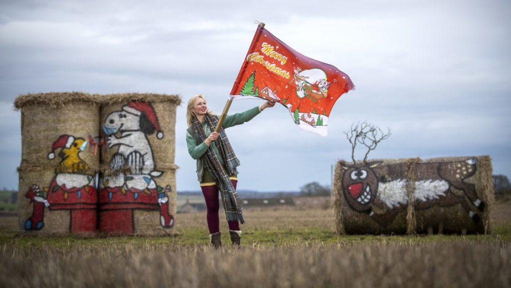 Balesy: Farmer transforms hay bales into works of art.