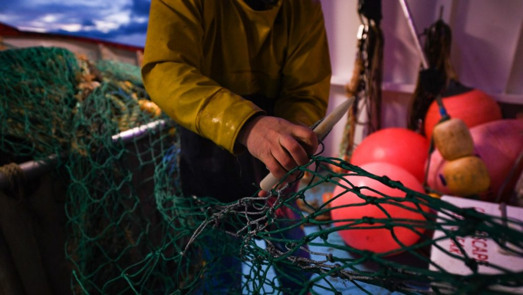 Fishing: The funding package will help the sector deal with the impact of coronavirus and Brexit.