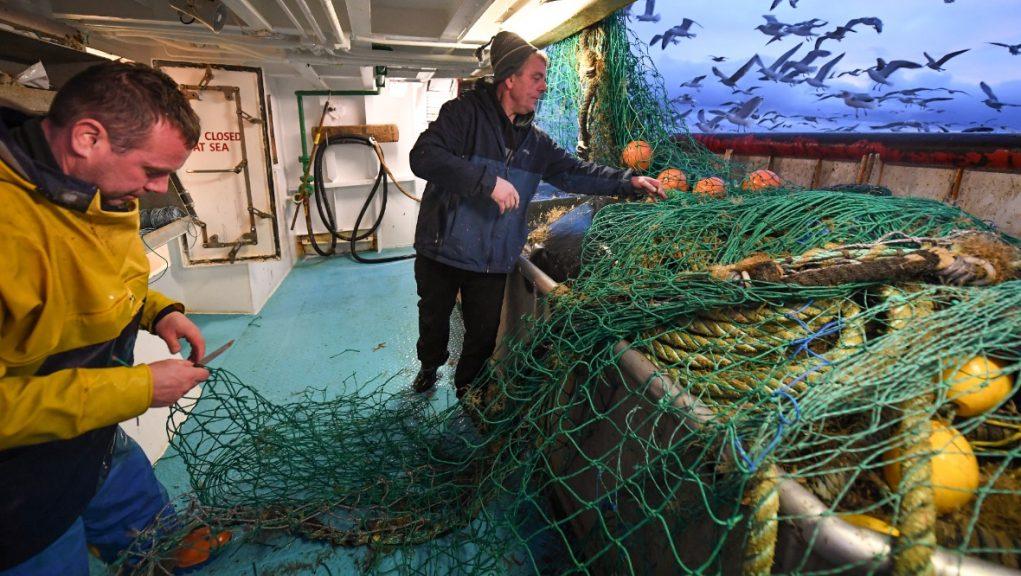 Scottish Seafood Association is concerned at travel delays.