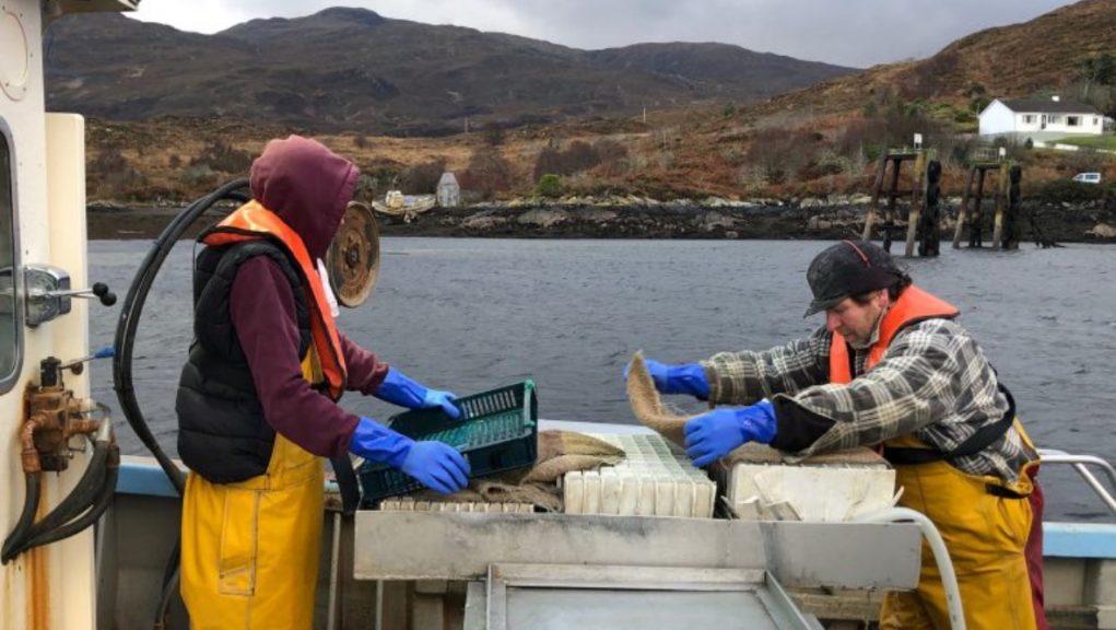 Skye: Creel fishermen want a ban on trawling close to the shore.
