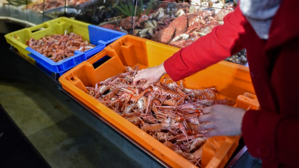 Delays to Scottish seafood reaching European markets post-Brexit.