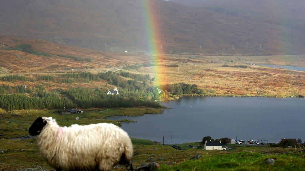 Western Isles: Lyme disease on rise.