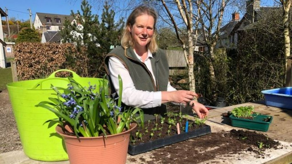 Anne Smith grows seasonal flowers in Perthshire.