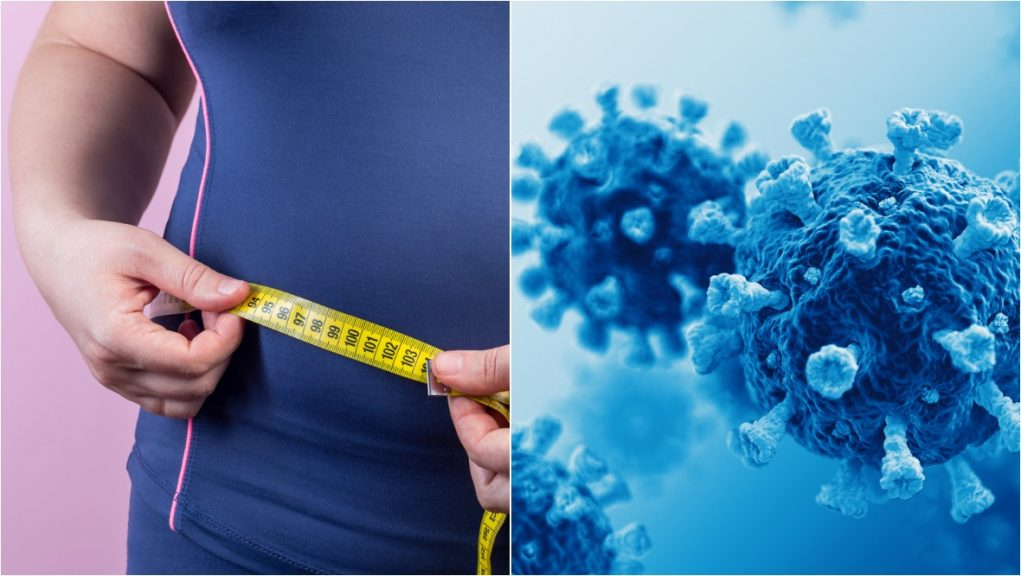 Obesity-related factors are believed to be associated with an increased risk of contracting various viral diseases.
