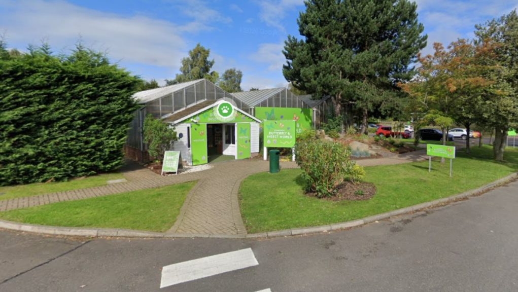 Closure: Edinburgh Butterfly and Insect World to close.
