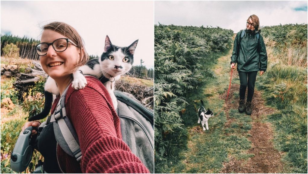 Munro joins owner for hikes up mountains.