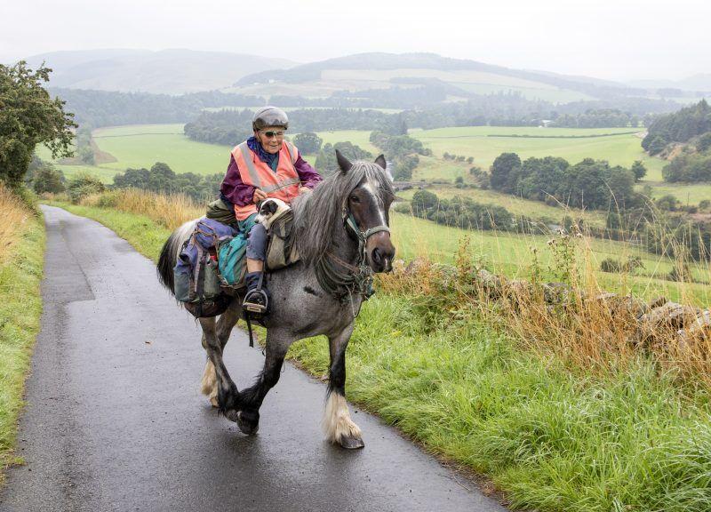 Epic trek: Jane Dotchin will trek 600 miles with horse Diamond and pet dog Dinky.