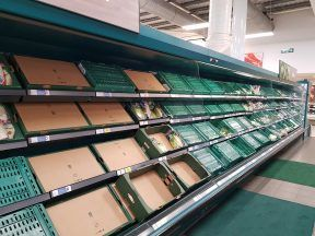 Industry groups have warned Food shortages could peak at Christmas with major problems facing the supply chain.