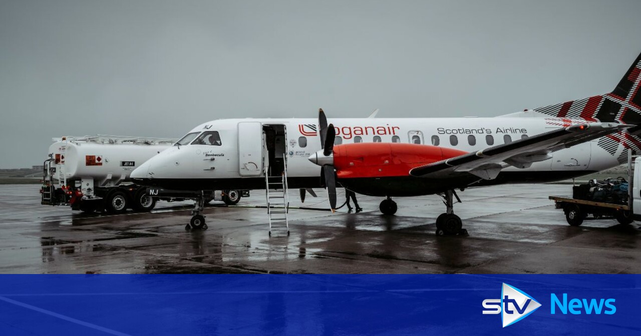 Wind farm construction 'has helped airline's recovery from pandemic'