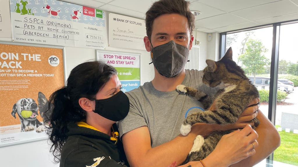 Forbes the cat is reunited with its owners after being reported missing 10 years ago.