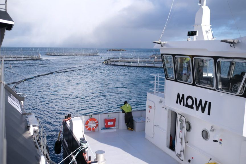 Mowi is a Norwegian company that owns several aquaculture sites in Scotland.